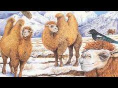 Line Drawing Of Desert Animals : Desert animal information use to make cards