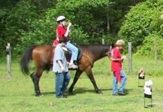Love for Therapeutic Riding: Making a difference in the lives of locals with disabilities in Beaufort