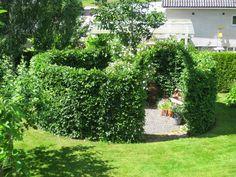 Hallontrollets trädgård: Snyggare häck, svingande lianer, tystare vatten och…