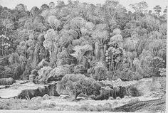 """""""Percy Lau (Arequipa, Peru 1903 - Rio de Janeiro RJ 1972) foi desenhista, ilustrador, gravador e pintor. Em 1921, transfere-se para Olinda, Pernambuco, onde é um dos fundadores do Movimento de Arte..."""