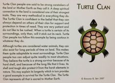 The Turtle Clan - characteristics