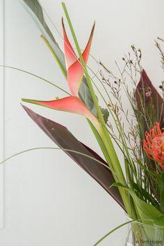 Heliconia Bloem - Bloomon bloemabbonementen Styling en fotografie : Souraya Hassan, Binti Home