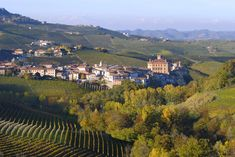 The village of Barolo, home to the famed wine, in Piedmont. NB: Turin is the capital of the region of Piedmont, Italy. Basic Italian, Italian Words, Italian Phrases For Travelers, Italian Language, Korean Language, Japanese Language, Spanish Language, French Language, Barolo Wine