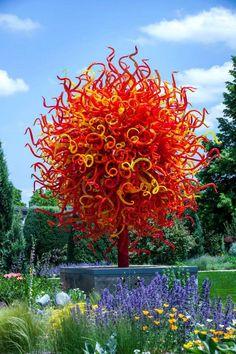 Dale Chihuly - Denver Botanic Gardens