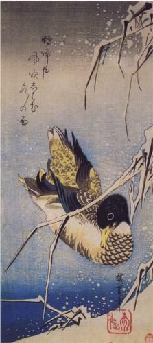 ♞ Artful Animals ♞ bird, dog, cat, fish, bunny and animal paintings - Reeds in the Snow with a Wild Duck - Hiroshige Art Chinois, Art Asiatique, Art Japonais, Art Et Illustration, Japanese Painting, Japanese Prints, Japan Art, Art Design, Animal Paintings