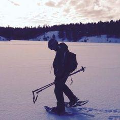 Sneeuwschoenen wandeling nabij Stockholm Zweden. Loop deze georganiseerde wandeling over de besneeuwde grond nabij Stockholm en volg de sporen van het wildlife. Check AdventureTickets.nl