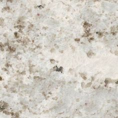 Alaska White Granite Slab - depends on the slab. I would only use this granite if it was not too busy, slabs vary a lot as it's a natural stone. White Granite Countertops, Outdoor Kitchen Countertops, Kitchen Countertop Materials, Granite Kitchen, Concrete Countertops, Kitchen Counters, Granite Tops, Country Countertops, Quartz Countertops Colors