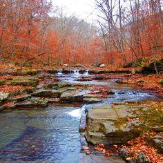 Greasy Creek, Newton County, Ozark National Forest, Arkansas - Hiking the Ozarks Photo