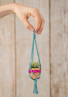 This Natural Life Mini Macramé Succulents are perfect to hang in any tiny spot, even your rearview mirror. Shop Now! Macrame Plant Hanger Patterns, Macrame Plant Holder, Macrame Plant Hangers, Plant Holders, Faux Succulents, Planting Succulents, Natural Life, Clay Pots, Hanging Plants