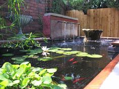 Small ponds are great additions to your front yard designs, gardens or backyard landscaping ideas. Small ponds look peaceful and turn your front yard or backyard landscaping into beautiful masterpiece. Small Backyard Ponds, Backyard Water Feature, Small Ponds, Garden Ponds, Aquaponics System, Aquaponics Diy, Garden Pond Design, Landscape Design, Landscape Plans