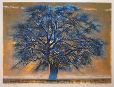 """BLUE TREE"" by Joichi Hoshi, an original woodblock print, signed and numbered. 1972