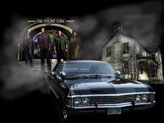 ♥ Supernatural ♥ - supernatural Wallpaper