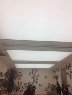 Verlichte plafonds 2