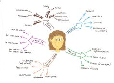 character graphic organizer * character graphic organizer _ character graphic organizer first grade _ character graphic organizer kindergarten Teaching French, Mind Maping, French Adjectives, Mental Map, Life Map, Portfolio Presentation, French Education, Teaching Schools, Ideas