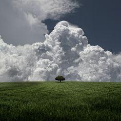 Huge Storm, Little Tree by Carlos Gotay, via 500px