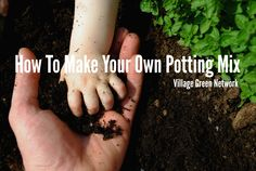 How To Make Your Own Potting Mix / http://villagegreennetwork.com/make-potting-mix/