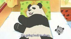 panda stuff