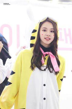 TWICE ♡ Chaeyoung