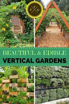 Beautiful edible vertical garden designs