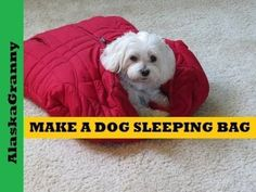 Make a Sleeping Bag For Your Dog Easy Sewing Project Homemade Pet Beds, Diy Dog Bed, Dog Beds, Dog Clothes Patterns, Sewing Patterns, Hiking Dogs, Dog Pattern, Sleeping Dogs, Little Dogs