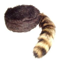 Whether you want a red fox cap or a skunk cap, Crockett Coonskin Caps has the fur hats you need to get a beautiful and stylish hat at a great price. Description from crockettcooncaps.com. I searched for this on bing.com/images