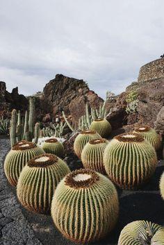 9 Ideeën Over Lanzarote Lanzarote Canarische Eilanden Vakanties