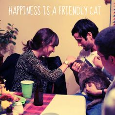 Happiness is a friendly cat