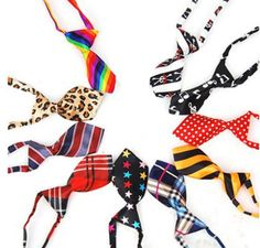 10 Pcs/Pack, Dog Cat Collar, Neckties, Assorted, Adjustable Pet Grooming Products Dog Accessories Cute Gift >>> Wow! I love this. Check it out now! : Cat Collar, Harness and Leash