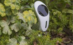 Netro Whisperer Smart Plant Sensor with WiFi & Solar Power