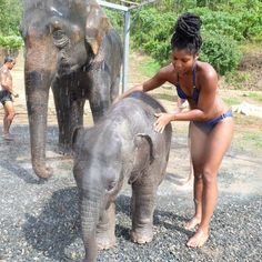 - 🐘 Spending half a day at the Elephant Jungle Sanctuary in Phuket felt like a week straight of hard labor. Vacation Mood, Vacation Spots, Places To Travel, Travel Destinations, Safari, Travel Aesthetic, Travel Goals, Dream Vacations, Trip Planning