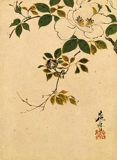 Shibata Zeshin, 1807-1891  Sazanka (wild camellias), ca. 1870's  lacquer painting- black, brown, green, pale ochre and white lacquer on paper, signed Zeshin with artist's seal Koma