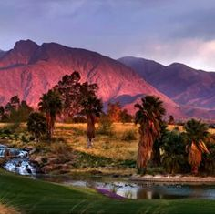 36 Best Anza Borrego Desert State Park Images State Parks Park States,Chocolate Cherry Caramel Chocolate Brown Hair Color