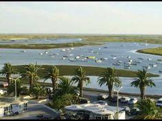 ecotourism, boat trips in Ria Formosa, Algarve - Formosamar