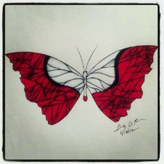 100 Butterflies in 100 Days, Day 41,Medium: Color Pencil