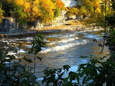View of Black river by Kathy Mereand, via Flickr