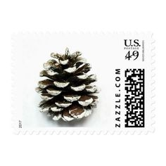 Pine cone winter stamp