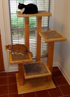 How to create an interesting DIY cat tree? - Cat tree can serve a beautiful decoration for those who are having cats in their homes. If you don`t have one, then you should think of creating one f. Diy Cat Enclosure, Cat Climber, Cat Tree House, Diy Cat Tree, Cat Trees Diy Easy, Cat Perch, Cat Towers, Cat Shelves, Cat Playground