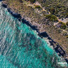 """The ""Australian Biotope 24"" photo series ( extended collection) #australianbiotope © photos by @nikosono | view 25 | South Fremantle, Western Australia"""