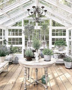 if i had a greenhouse