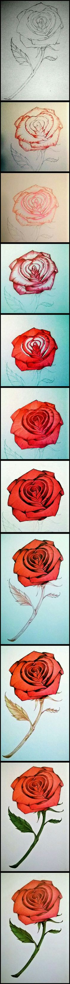 I love drawing ROSES
