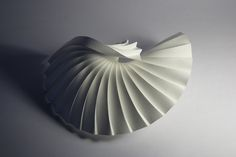 https://flic.kr/p/7GFMu5 | Curved pleat (shell 1) | Watercolour paper, Richard Sweeney, 2010.  www.richardsweeney.co.uk