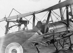 BRITISH AIRCRAFT FIRST WORLD WAR (Q 67949)   Royal Aircraft Factory R.E.8 two seat corps reconnaissance biplane. Pilot sitting in cockpit.