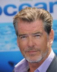 Image result for pierce brosnan hair