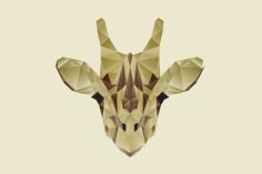 The Animals Illustrations by Nacho Gil