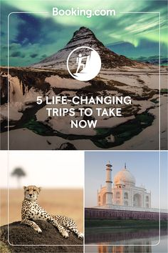 Start living your bucket list with , from diving in tropical seas to jungle adventures, a luxury safari or an evening under the northern lights. Tick off the Taj Mahal and Table Mountain, there's no need to stick to just one trip of a lifetime. Vacation Places, Dream Vacations, Vacation Spots, Places To Travel, Holiday Destinations, Travel Destinations, Oh The Places You'll Go, Places To Visit, Videos Mexico