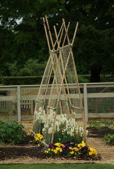 garden trellis. by bettye