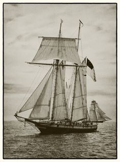 Tall Ship Lynx-The Pride of Baltimore in the 2012 Tall Ships Parade in Newport Rhode Island. Photograph taken by Ruth Clegg