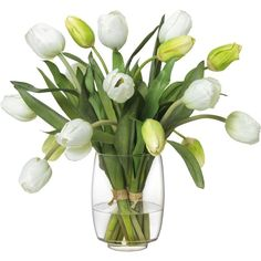 Diane James White Tulip Bouquet in Glass Vase ($495) ❤ liked on Polyvore featuring home, home decor, floral decor, flowers, plants, backgrounds, fillers, white silk flowers, artificial flower arrangement and tulip bouquet