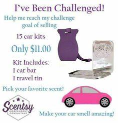 Breannaconverse.scentsy.us   Help me reach my goal!