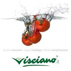 Buone Vacanze Happy Holidays Felices Vacanciones VISCIANO - Sapore Italiano